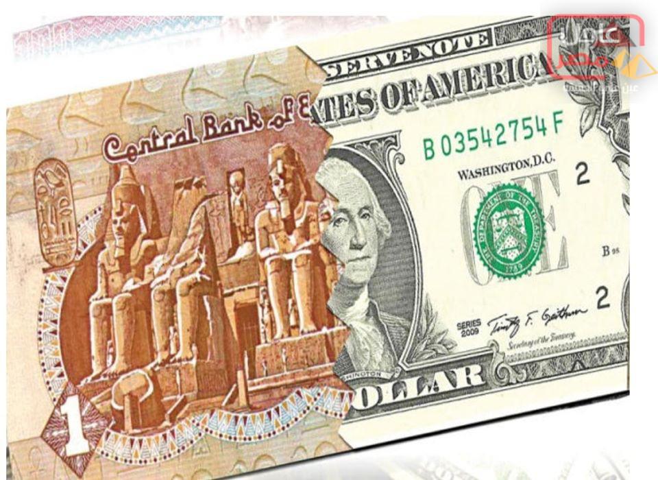 """Photo of الدولار """"القوي"""" يواصل نزيفه أمام الجنيه المصري"""