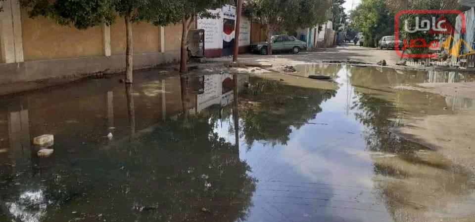 Photo of طلب احاطه من حسن سيد خليل عضو مجلس الشعب وامين حزب مستقبل وطن باسوان