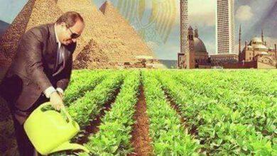 Photo of من الفاسد ومن المفسد