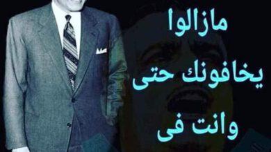 Photo of كلام عاجبني لشخص محب لمصر اسرني