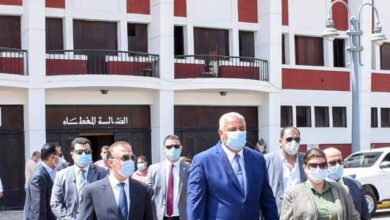 Photo of الشريف يطلق إشارة بدءعودة الحياة باستاد الإسكندرية