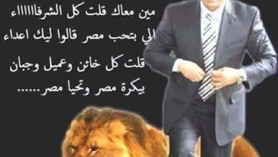 Photo of لماذا أنقلبت الدنيا علي مصر أم الدنيا